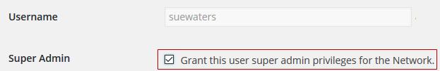 Grant super admin access